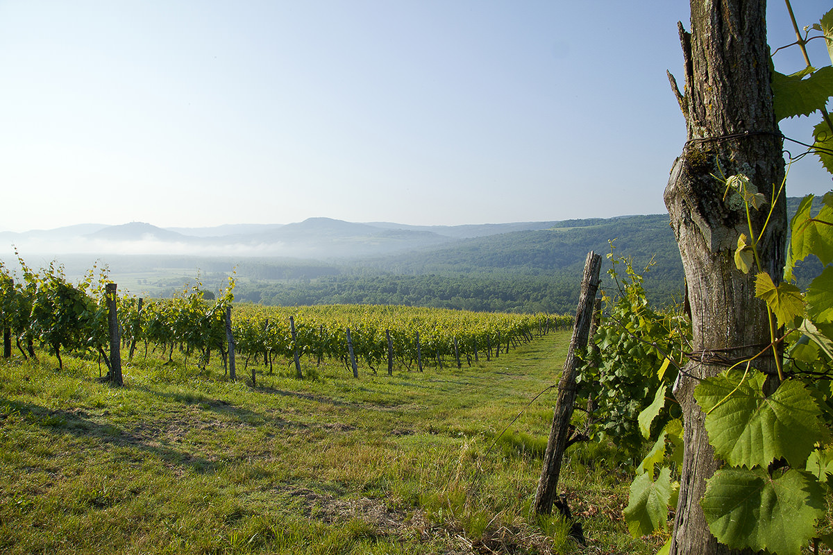 IndoEuropean Travels Europe 119 Slovenia Prekmurje