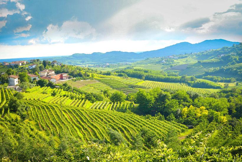 IndoEuropean Travels Europe 35 SLOVENIA Goriska Brda